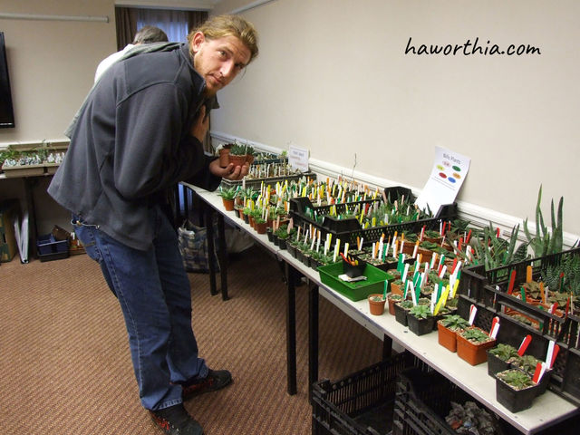 Gildenhuys in the Haworthia Society Convention, 2015